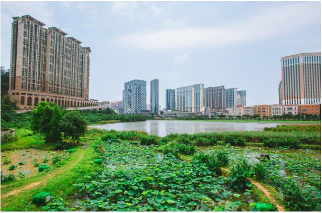 FLIGHTS, ACCOMMODATION AND MOVEMENT IN MACAO