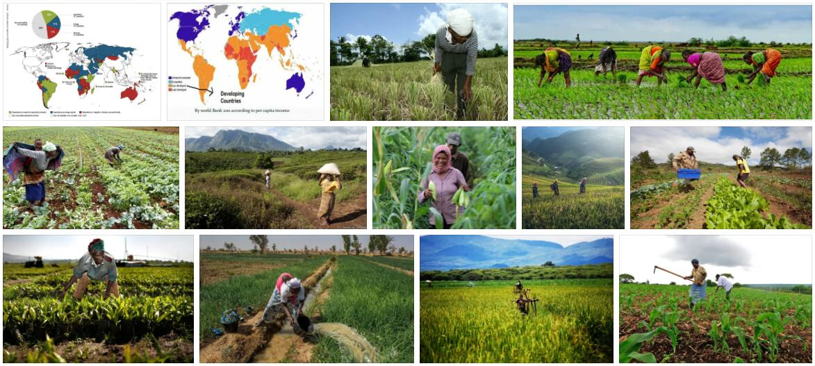 Agriculture in Developed and Underdeveloped Countries